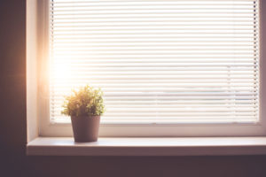 sun-shining-through-the-window-with-sun-blind-picjumbo-com